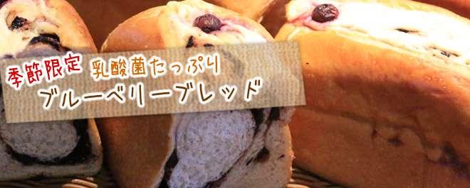 乳酸菌たっぷりのヨーグルト種を練り込んで、自家製のブルーベリージャムを巻いて焼き上げました!