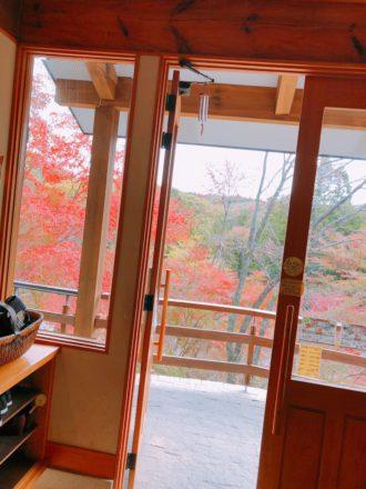 IMG_0105 益子 栃木 紅葉 森のレストラン