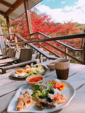 IMG_0113 森のレストラン 紅葉 もみじ