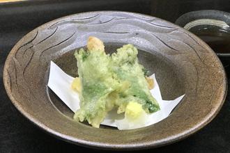 益子焼 作家 横山貴史 寿司割烹 喜多八 寿司皿 刺身皿 割烹器 天ぷら