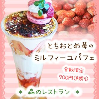 益子ランチ 森のレストラン いちごパフェ とちおとめ 苺パフェ
