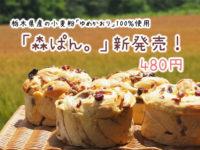 森ぱん ふっくら 益子パン 手作り 無添加パン