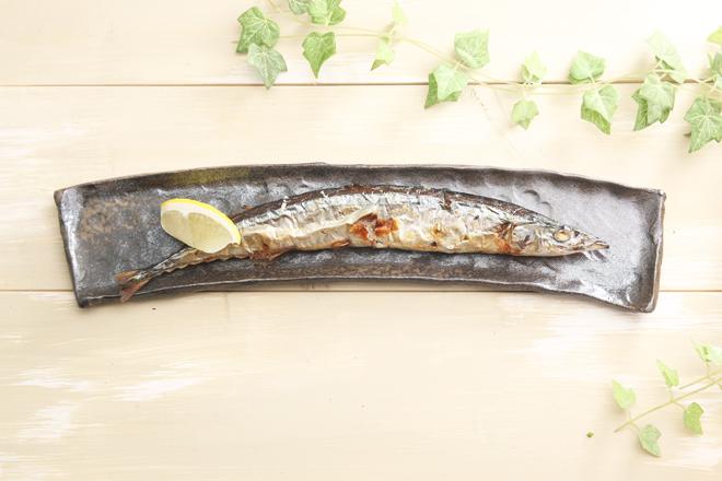 陶芸体験 手びねり体験 益子焼 オリジナル サンマ皿 秋刀魚皿