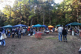 森×ART 2013
